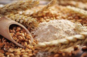 Trigo y harina de trigo